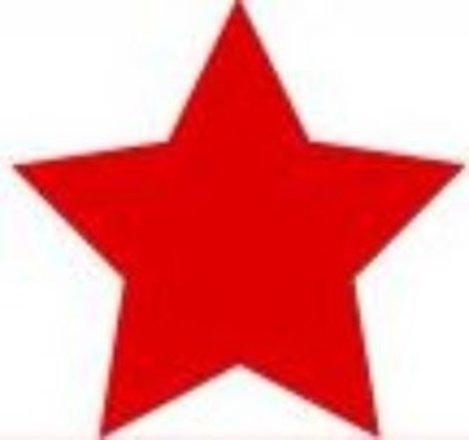 Red Star Construct Bauunternehmen KG